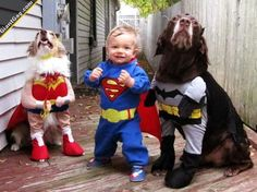 Funny images of the day (110 pics) Toddler And Dogs In Cute Costumes