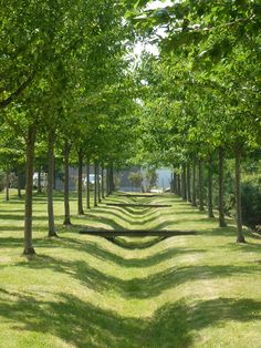 Atelier de paysages Bruel Delmar - Morinais new district - The heart of residential Islets
