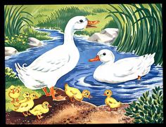 VINTAGE 1960  DUCKS  DUCKLINGS   - POND - DRAKE-  VINTAGE  LITHO  ART PRINT