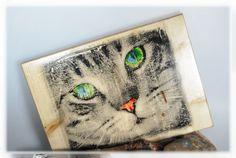 Katze mit grünen Augen / Foto auf Holz von DaiSign auf DaWanda.com