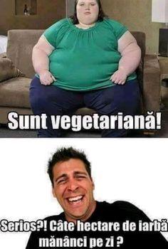 Funny Jockes, Funny Texts, Hilarious, Funny Stuff, Real Memes, Love Memes, Super Funny, Cringe, Animals And Pets