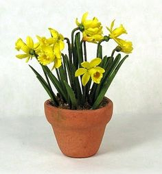 how to: trumpet daffodils