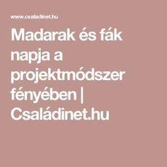Madarak és fák napja a projektmódszer fényében   Családinet.hu