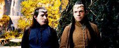 Lindir & Elrond