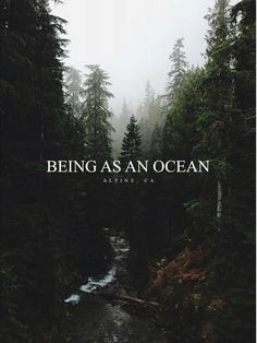 Being As An Ocean Trees and River Landscape Poster