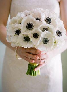 Wedding bouquet idea; Featured Photographer: Q Weddings Photography