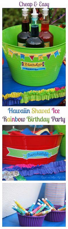 Hawaiin Shaved Ice B