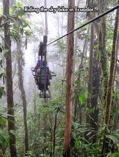 Rain Forest Biking