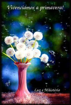 Cure Seu Corpo  Florescer... Renascer... Brotar!  O corpo físico expressa continuamente a mente.  O sistema imunológico procura o melhor equilíbrio para que todo sistema físico,emocional,mental e etérico se expressem harmoniosamente.  A melhor atitude para a saúde  é  que o pensamento negativo e a crença destrutiva podem e devem ser mudados.  A realidade  é o que há de mais empolgante e doce no mundo.