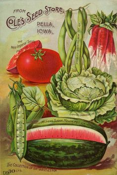 Canvas Home Wall Prints Vintage Garden Vegetable Seed Packet Print Color Picture