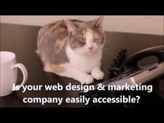 4 Awesome Web Design & SEO Videos Created By TheeTeam!