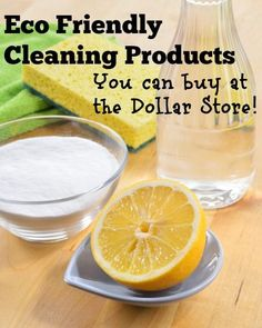 Eco Friendly Household Cleaning Products You Can Buy at the Dollar Store - The Greenbacks Gal
