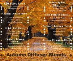fall diffuser blends Simply Aroma