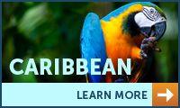 Go cave tubing in Belize or snorkeling in Honduras