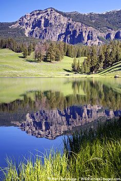 Trout Lake, Yellowstone National Park, Wyoming