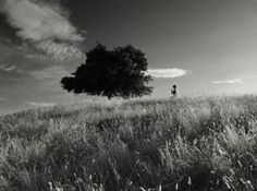 Blancanieves | Pablo Berger | 2012