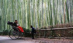 Arashiyama Full Day