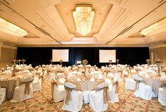 The Luxurious Grand Ballroom at Stamford Plaza Sydney Airport glitters beneath the shimmering light of three chandeliers and offers seating of up to 270 in comfort and style. Shimmer Lights, Airport Hotel, Wedding Function, Stamford, Hotel Offers, Glitters, Chandeliers, Sydney, Explore