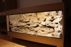 Afbeelding Reptile Decor, Reptile Room, Gecko Cage, Gecko Vivarium, Snake Cages, Bearded Dragon Enclosure, Bearded Dragon Terrarium, Reptile Terrarium, Aquarium Backgrounds
