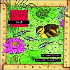 Amazon.com: Pond (9780070579323): Donald Silver, Patricia Wynne: Books