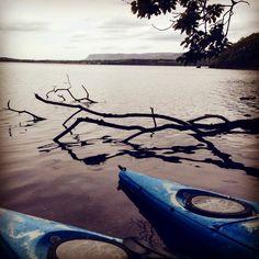 Kayaking on Lough Gill in County Sligo with Sligo Kayak Tours. A very peaceful experience. Wild Atlantic Way, Kayak Tours, Surfboard, Kayaking, Wander, Kayaks, Surfboard Table, Skateboarding