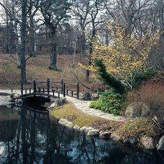 Ponte japonesa e ilhota no Jardim Botânico Bergianska Trädgarden em Estocolmo, na Suécia.  Fotografia: tessarian, via Flickr.