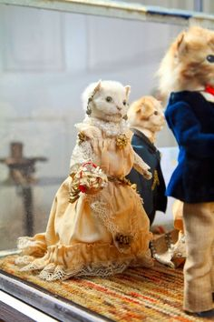 Photos: Walter Potter's Twisted Taxidermy   Vanity Fair