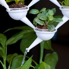 "Mini modular ""Aqueduct"" planters are 3D printed for windows #3dPrintedHomeware"