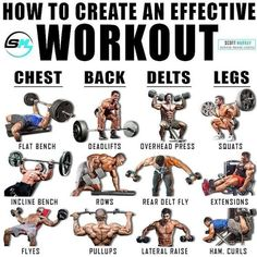 Though isolations exercises have a place in an exercise program, COMPOUND lifts (lifts that work more than 1 joint/muscle group) have shown… Full Body Workout Routine, Gym Workout Tips, Weight Training Workouts, Workout Fitness, Studio Workouts, Weight Training Programs, Kickboxing Workout, Dumbbell Workout, Fitness Exercises