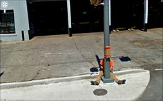 The oddest Google street views