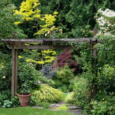 A northwest garden-  I love the gateway and the Japanese forest grass!.......... Layer around grape arbor.