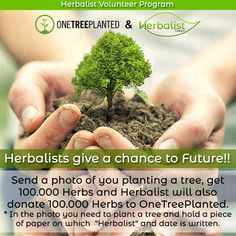 As Herbalist Team, we are working towards providing everyone with opportunities to live naturally. That's why we are creating Global Rare Herbs Marketplace to make quality herbs accessible to… Volunteer Programs, Farmer, Herbs, Medium, Create, Plants, How To Make, Live, Herb