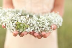 baby's breath & succulent crown | Blue Lace Photography