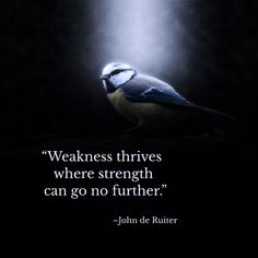 """Weakness thrives where strength can go no further.""–John de Ruiter"