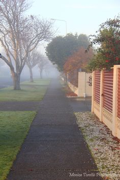 Mystical fog covered Invercargill recently turning the streets into a scene fresh out of a fairy tale. Mists, New Zealand, Turning, Fairy Tales, Scenery, Sidewalk, June, Australia, Fresh