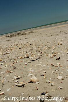 Treasure Island, Florida  June 2012