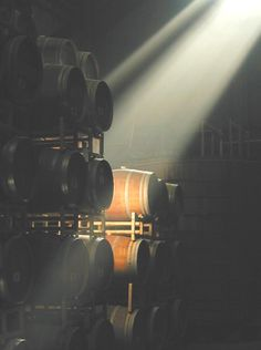 Sunlight Beaming Into The Barrel Room. Firestone Vineyards & Winery.