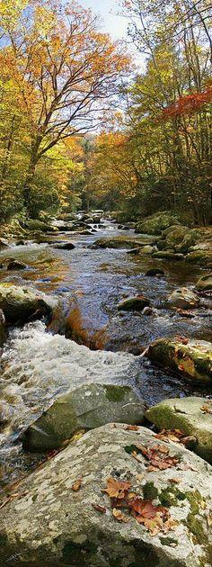 Flow of Autumn, Great Smoky Mountains National Park. Photo via Ed Kelley, Fine Art America