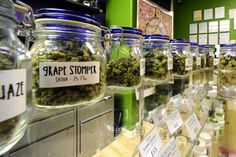 Could this mostly false argument derail California marijuana...