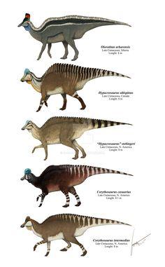 "Lambeosaurine Hadrosaurids Plate 1 by Gabriel Uguet - ""Some species of Hadrosauridae: Lambeosaurinae """