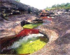 """Caño Cristales o """"Río de los cinco colores"""", Sierra de la Macarena. Colombia."""