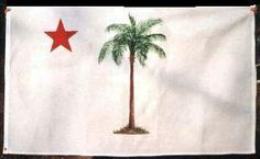 Palmetto Flag from South Carolina.