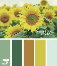 paint colors- Kansas!