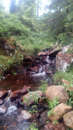 Albumarkiv - Uten tittel River, Outdoor, Outdoors, Outdoor Games, Outdoor Living, Rivers