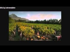 Funny Commercials #5 - Funny Sexy Commercial Compilation - Funny TV Ads - Funny Video