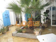 Maison arabe (R+1)  de 300m² couvert,au Coeur de la ville d'Hammamet Loi Pinel, Architecture Design, Plants, Places To Visit, City, Home, Architecture Layout, Planters, Architecture Illustrations