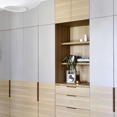 KITCHEN / LIVING:  Kitchen / living storage incorporating entertainment unit.  Joinery detail inspiration.  I wouldn't want to use too much of the blonde timber as it might not work so well with your kitchen.  You could look at using same colours as kitchen? Handle details are nice (leather)
