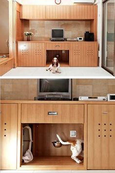 Awesome! In Toru Hirose's living room in Kobe, Japan, his basset hound, Marco, has a hidden snack bar, restroom and nap space.