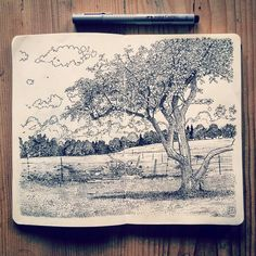 Scene behind the holiday house. Swiss country side. #swiss #jura #nature #tree #field #woods #drawing in my #moleskine #sketchbook