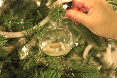 A DIY Coastal Christmas Tree - sea shell and sand glass homemade beach ornaments - Charleston Crafted